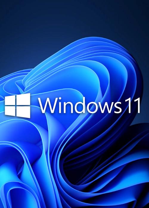 Microsoft Windows 11 Pro OEM CD-KEY GLOBAL